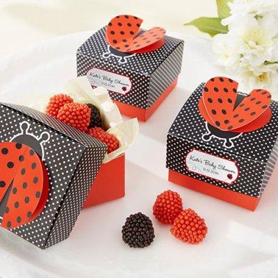 personalized-d-wing-ladybug-favor-boxes-ladybug