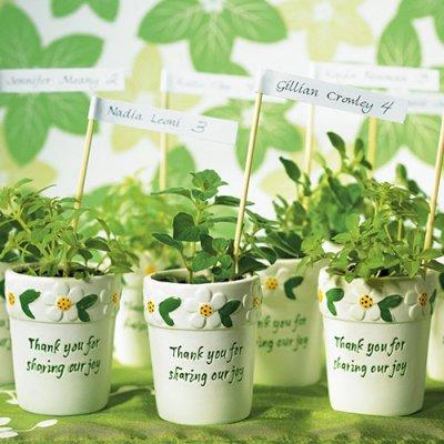 miniature-flower-pots-400