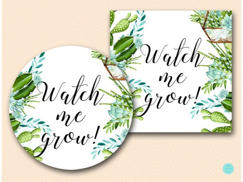 plant seed watch me grow favor tags
