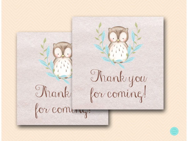 sn401b-favor-tags-2in-blue-owl-baby-shower-thank-you-tags