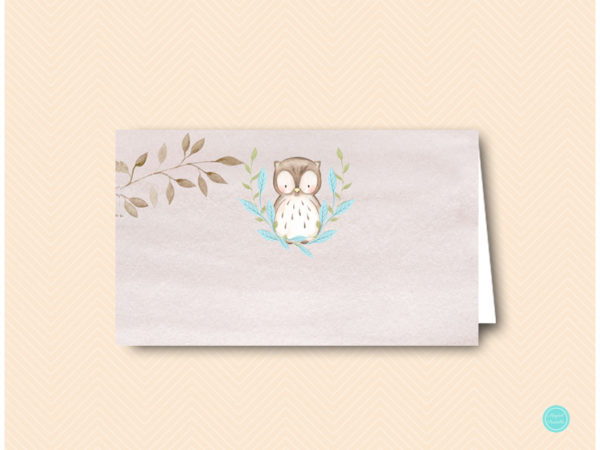 sn401b-label-blue-owl-baby-shower-food-labels-tent-labels