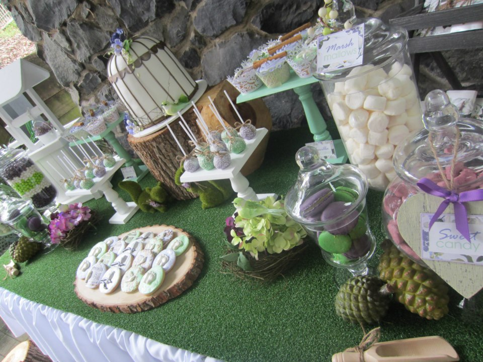 Rain forest Baby Shower