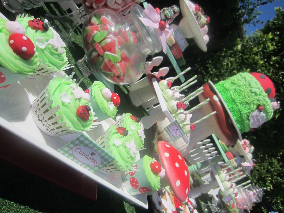 ladybug theme party