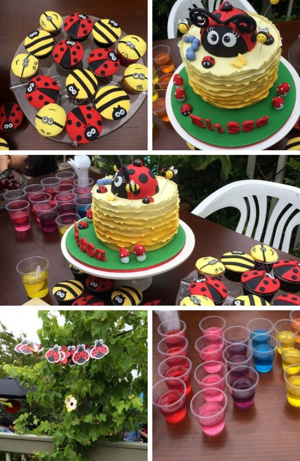 A Little Ladybugs first birthday