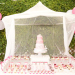Beautiful Princess Ballerina Party