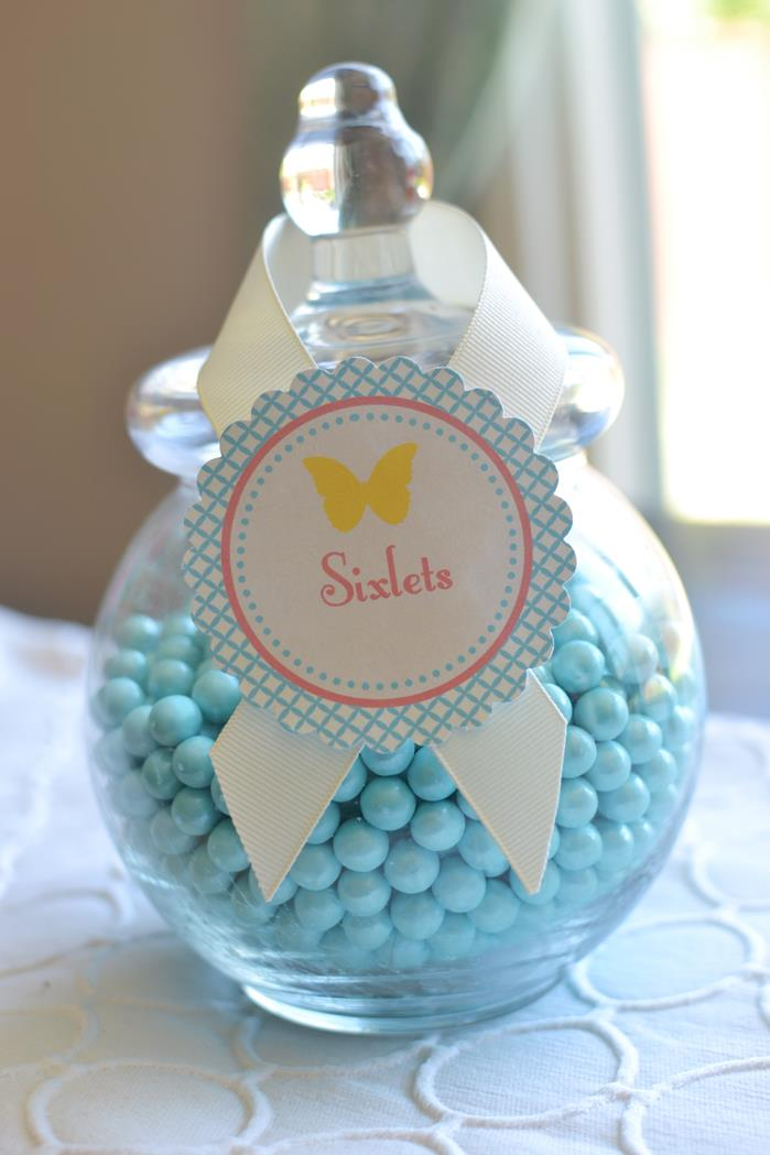 Butterfly Garden Baby Shower Theme Ideas