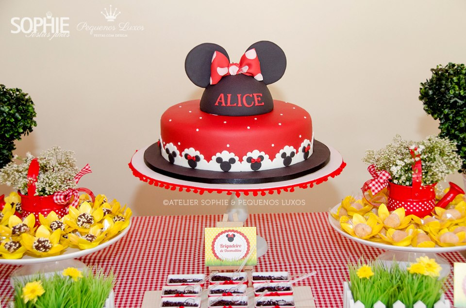Picnic with Minnie Mouse Themed Party