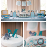 Baby Boy Elephant Naming Party