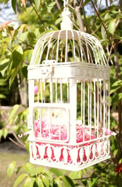 baby naming party pink and white for baby girl by keren via babyshowerideas4u.com birdcage