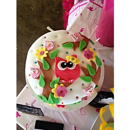 Whoo Owl Baby Shower decoration inspirations cake