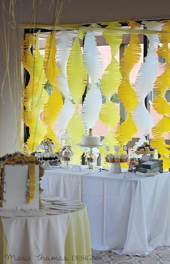 gender reveal baby shower party, girl or boy, fringe backdrop