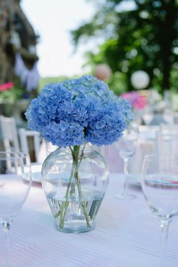 under the sea baby shower ideas, blue colored hydrangeas