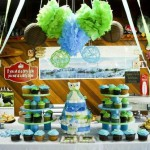 Owl Baby Boy Shower
