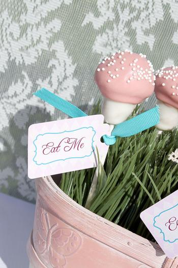 Shabby Chic Alice in Wonderland treats eat me labels
