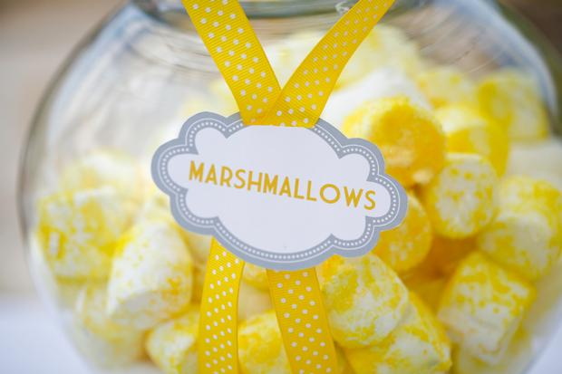 b is for baby shower invitation, bee themed, little bee eating, lemon grass drink, yellow marshmallows