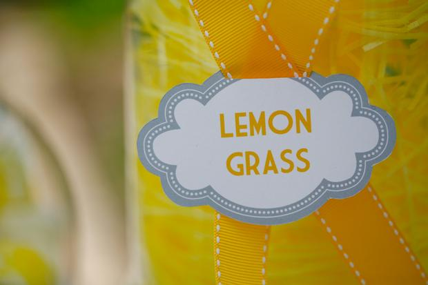 b is for baby shower invitation, bee themed, little bee eating, lemon grass drink