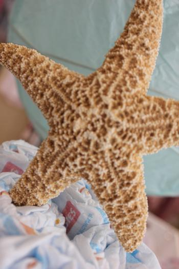 sip and sea baby shower party diaper cake topper starfish