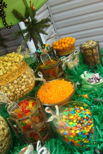 Where the Wild Things Are, Safari Themed birthday party, saferi themed baby shower ideas
