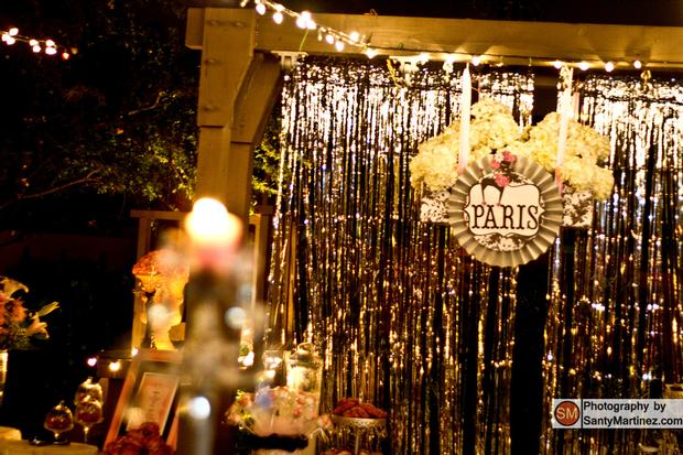 a night in paris party decorations, paris decors, backdrop