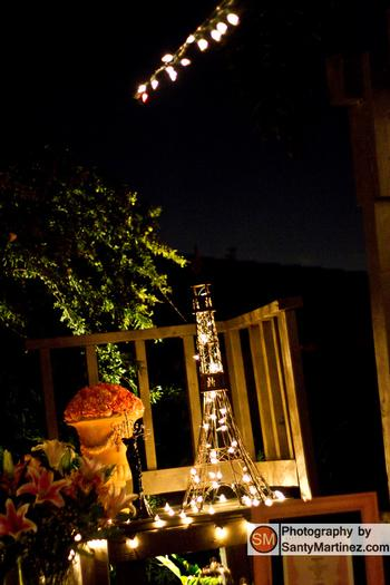 a night in paris party decorations, paris, tower