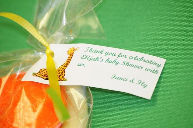 Safari Baby Shower Favor Bags