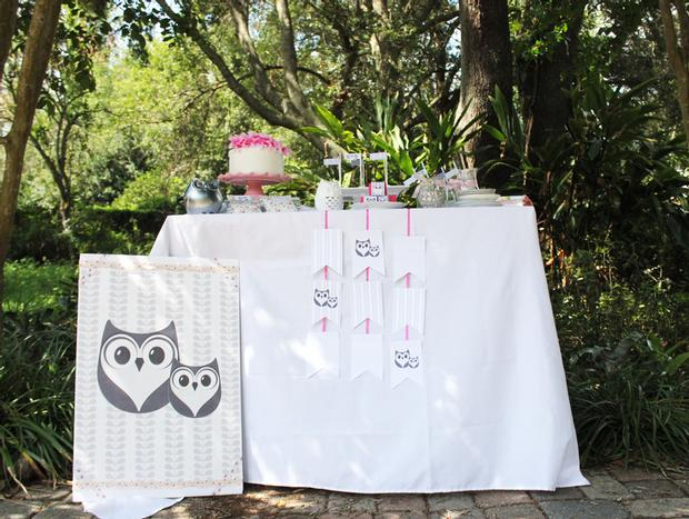 owl baby showe theme ideas dessert table