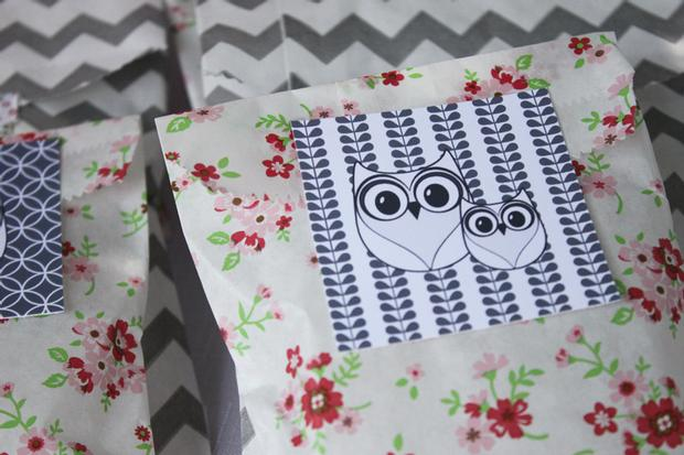 owl baby showe theme ideas
