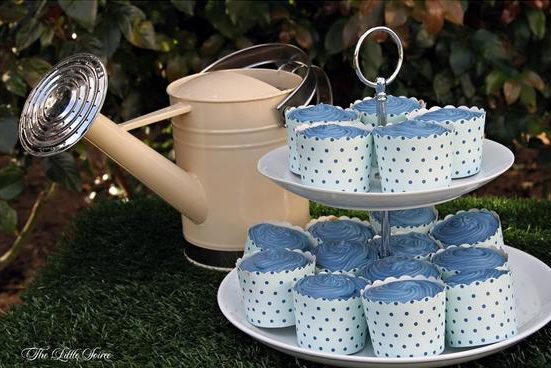 Peter Rabbit Baby Blue Cupcakes