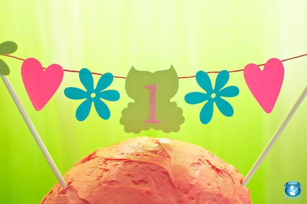 Peace Love and Owls Birthday banner