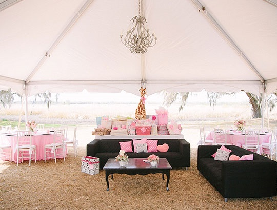 outdoor baby shower, southern baby shower (4)