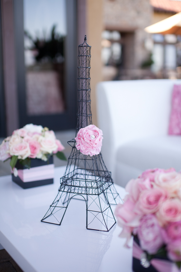 Paris Inspired Baby Shower decoration ideas (10)