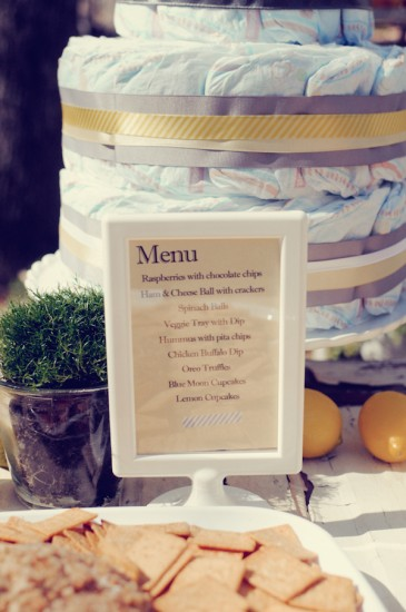 Shabby Chic Themed Baby Shower (12)