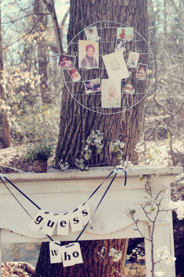 Shabby Chic Themed Baby Shower