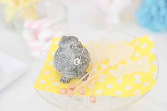 Birdie Baby Shower ideas
