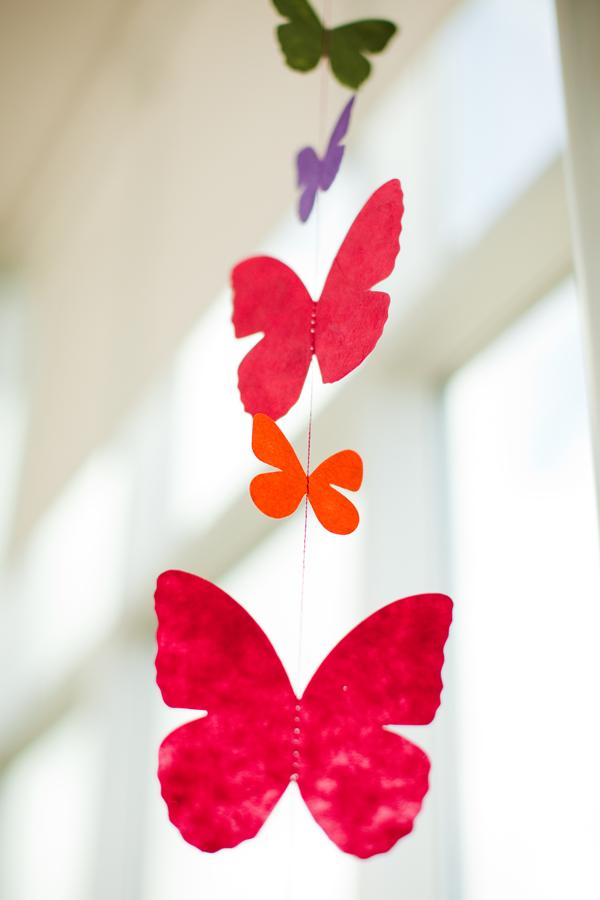 orange, purple, green, red butterflies
