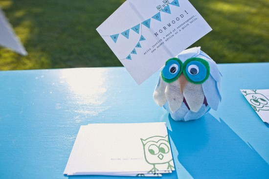 Green Blue Owl Baby Shower (17)