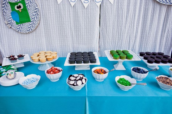 Green Blue Owl Baby Shower (18)