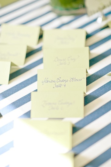 Pretty Navy Blue Baby Shower (5)