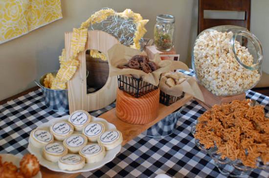 Stout Baby Farm Theme food table