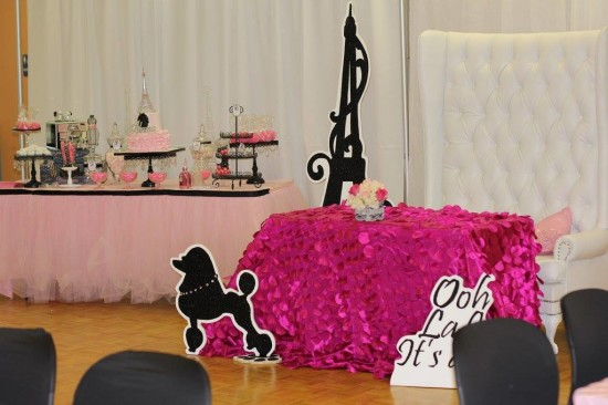 Ohh Lala It's a Girl Paris Baby Shower overview