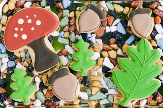 sugar cookies in rock chocolates