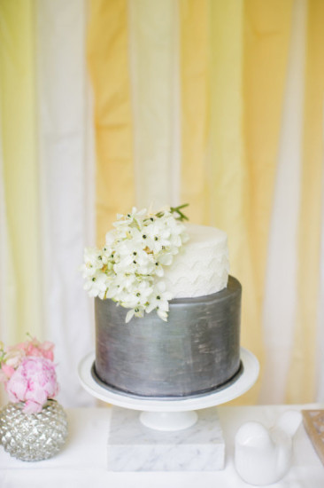 Outdoor Co-ed Baby Shower cake 1