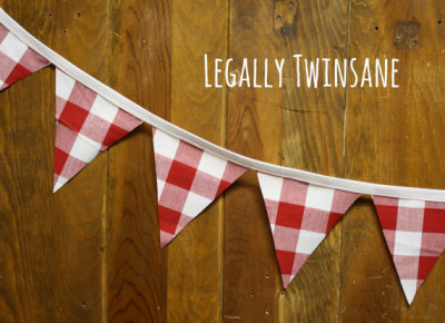 Fabric Bunting banner red white gingham checked plaid BBQ picnic shower birthday nursery