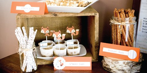 Mr.-Foxy-Fox-Baby-Shower