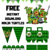 Free Ninja Turtles Printable