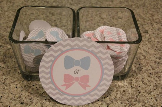 Little Man or Little Lady Gender Reveal pink or blue