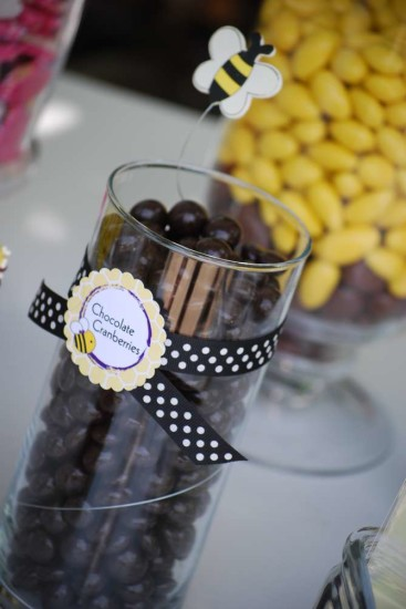 cute as can bee candy buffet, treats, cranberries