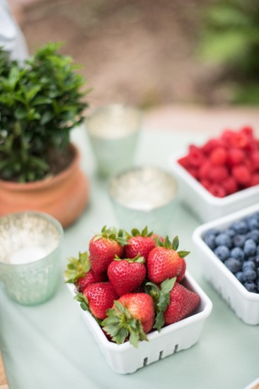 Garden Baby Shower food ideas, berries