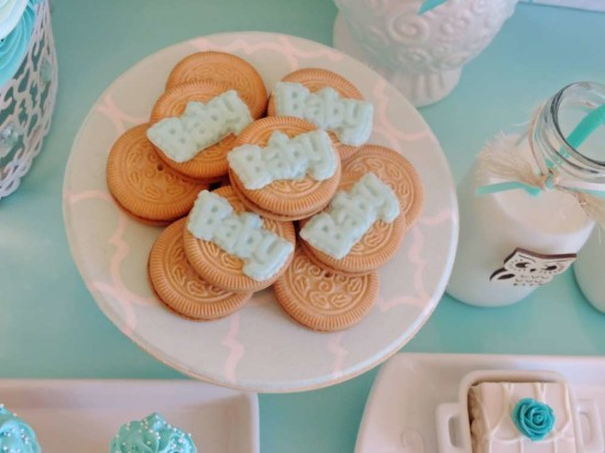 welcome-home-owl-baby-shower-ideas-cookies
