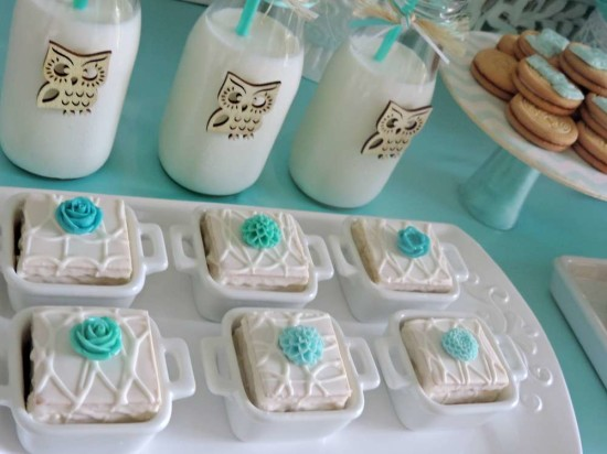 welcome-home-owl-baby-shower-ideas-dessert-table-food